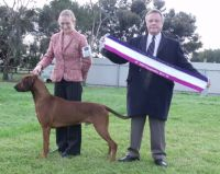 Leigh winning Best In Show with Mig (All Breeds) (GR CH: Rijstone Wat A Cheek, who is owned by Leanne Cassar